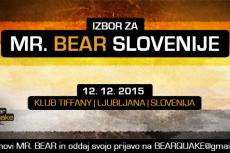 mr.bear 2015
